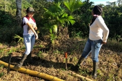 Seed-planting-at-Union-Lojana-community-4-Copiar