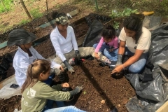 Soil-and-plant-collection-at-Nuevo-Carmen-community-Copiar