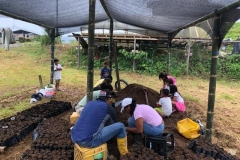 Soil-and-plants-collection-at-Chontaduro-community-6-Copiar